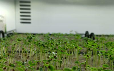 """""""Hier wächst die Zukunft""""  -agrilution-"""